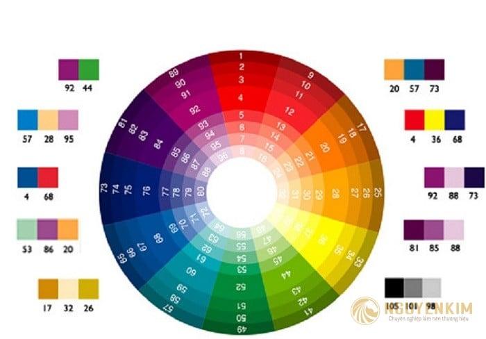 Cách phối màu trong thiết kế Catalogue