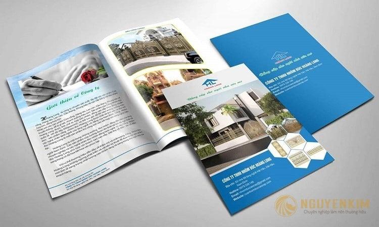 In brochure mẫu 1